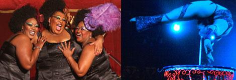 Madam Zingara's Cabaret