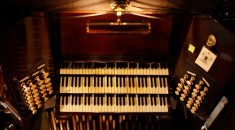 organ3