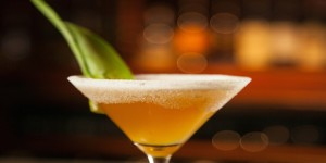 Skinny Passion fruit Martini, close up